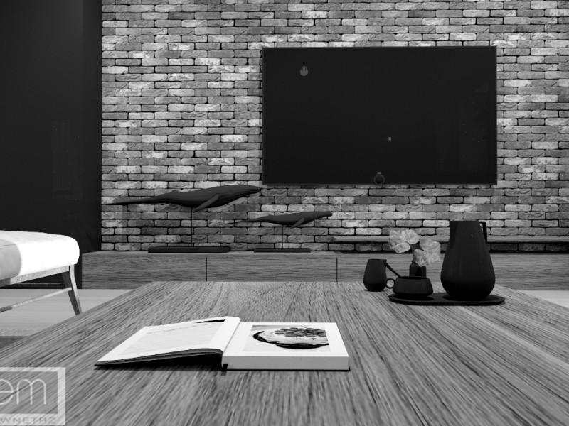 Projekt domu Kotuń